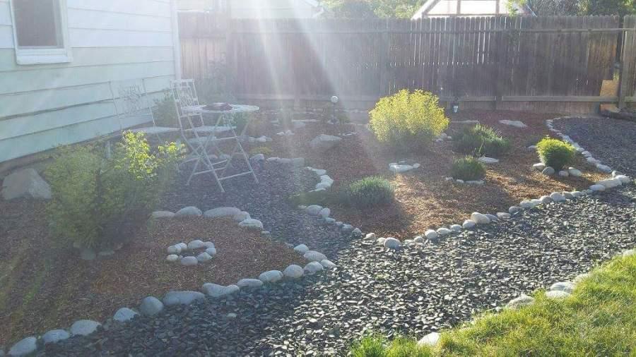 How My Garden Grows,2017